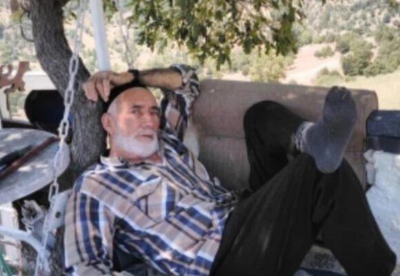 Ölüm yaşlı adamı ceviz ağacında yakaladı